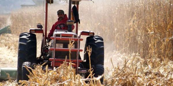 Falta de infraestructura eleva costos en transporte de agropecuarios
